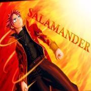 SalamanderTW